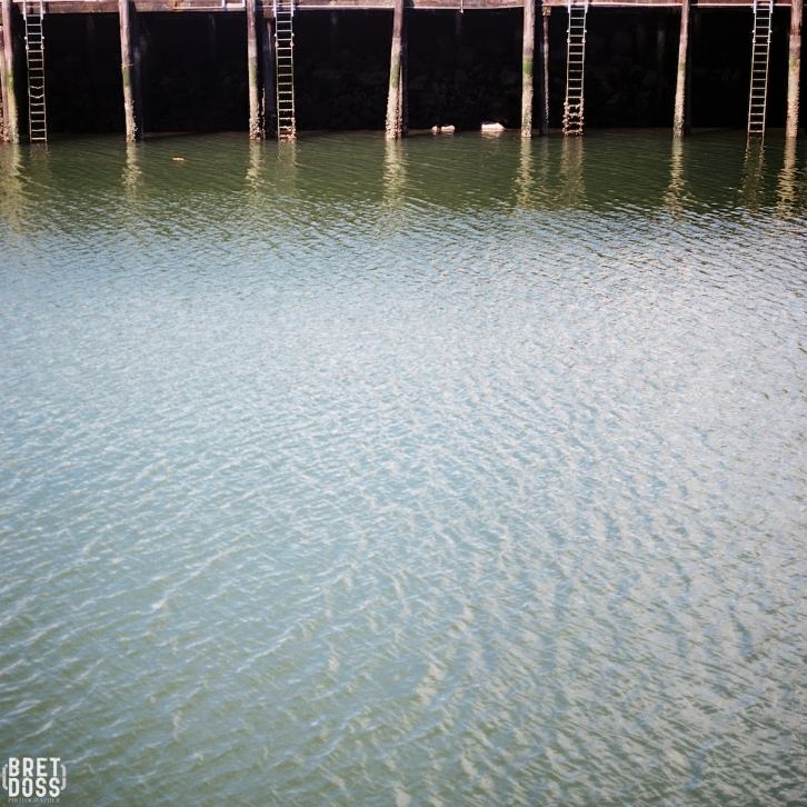 P52 Film 24 Frames in May © Bret Doss 2015 004
