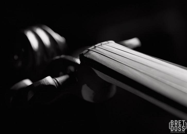 Violin bw © Bret Doss 2015 09